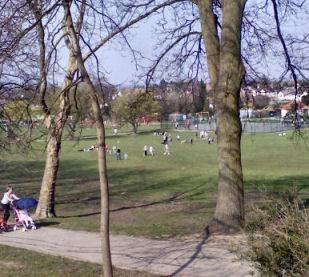 Park scene 2
