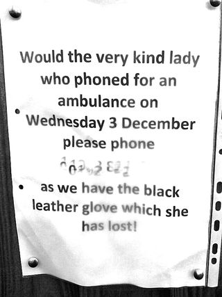 Would the very kind lady